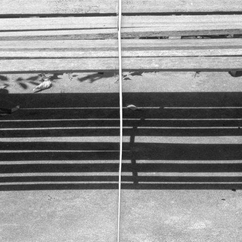 Old Rodinal test vs Adonal bench Tmax 400 detail blog